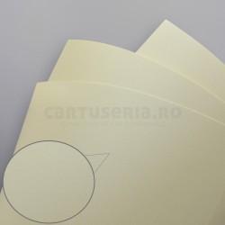 Carton diferite texturi A4 220gr 20 bucati - panza crem