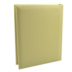 Album foto, copertă din carton sidefat, fereastră cu ramă ovală, Gold