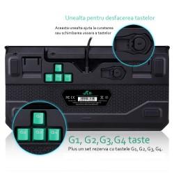 Tastatura Gaming iluminata, mecanica cu durabilitate extrema, Rii
