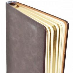 Agenda nedatata A5, margini aurii, piele ecologica, Nebo A25