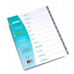 Separator carton, organizare documente, index color Ian-Dec, EXXO