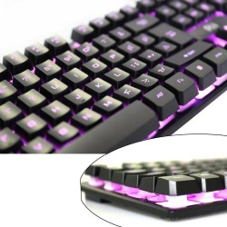 Tastatura Gaming multimedia iluminata in 3 culori, Rii