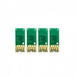 Set 4 chip-uri pentru Epson T1621 T1622 T1623 T1624