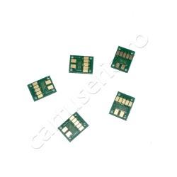 Set 5 chip-uri autoresetabile pentru PGI-550 CLI-551