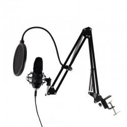 Set microfon profesional,...