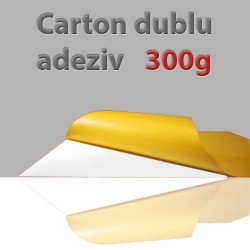 Carton dubluadeziv fotocarte1