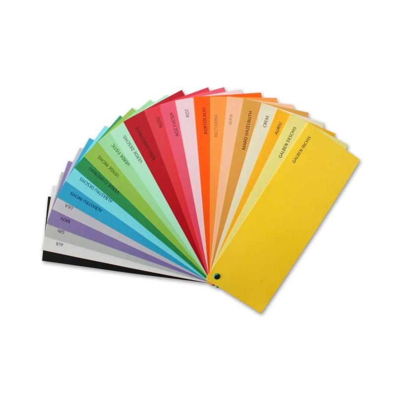 Carton A4 Color 160g Imprimante Si Copiatoare Culori Carton: Albastru Safir