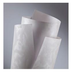 Carton A4 alb 220gr textura perlata top 20 coli